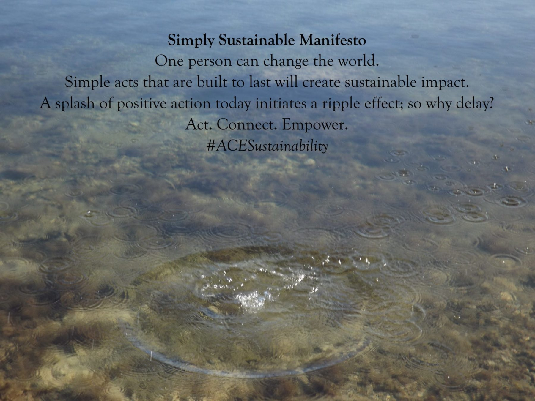 Simply Sustainable Manifesto_Image